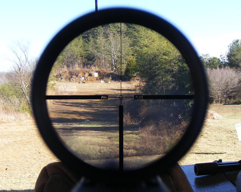looking through the Leupold VX HOG 1-4x20mm