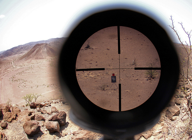 target on sight using scope crosshairs