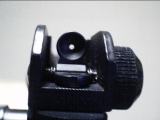 rear iron sight